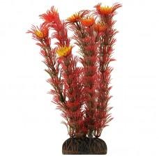 Растение 19см Триол 1999 Р Амбулия красн. 74044038