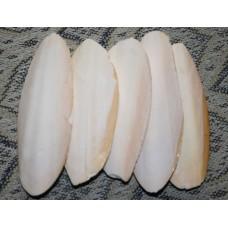 Панцирь каракатицы 50 шт.,12см без уп.