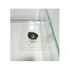 Плот Пл-4 д/черепах(на стенку аквариума малый) h 10*9*15см