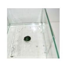 Плот Пл-9 д/черепах (на стенку аквариума ) 15 выс*19 длина *15 шир см