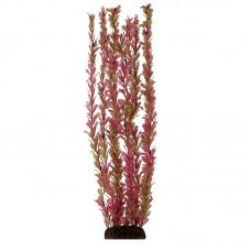Растение 55см Триол 5566Р Альтернантера---