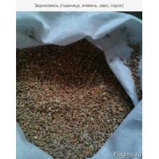 Зерносмесь (пшеница, ячмень, овес, горох) 1/40 кг. (Алтай)