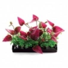 Растение 8см Композиция LD1146 (пакет) Laguna 74044166
