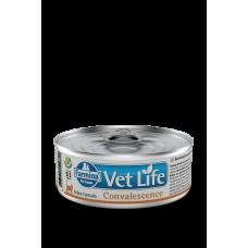 FARMINA Vet Life Cat 85гр конс. Convalescence д/кошек в период восстановления 2840 1/12