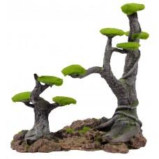 Декор Дерево для аквариума 25*21.5*23.5см  (PX521) ---