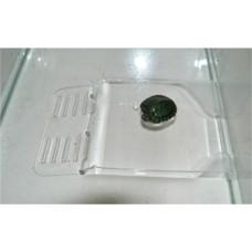 Плот Пл-2 д/черепах (установка на дно аквариума  средний)  h 4*15,5*21см  (00373263   )