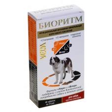 Биоритм д/собак крупных пород 48 таб. 1/5 (00379344   )