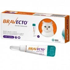 Бравекто Спот Он для кошек 250 мг (2,8 - 6,25 кг) -9922-