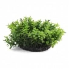 Растение д-5см 1142LD