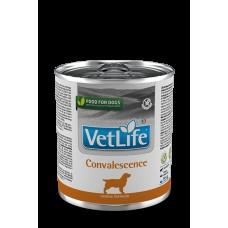 FARMINA Vet Life Dog 300г конс. Convalescence  в период восстановления 2789 1/6, (00384098   )