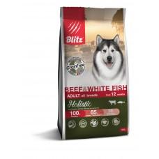 BLITZ Holistic 0,5 кг д/с ADULT BEEF & WHITE FISH беззерновой Говяд/Белая рыба 1/24   5623 (00388205   )